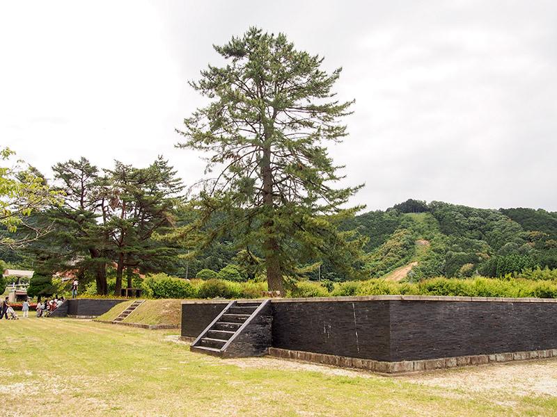 三ツ塚廃寺跡 2017