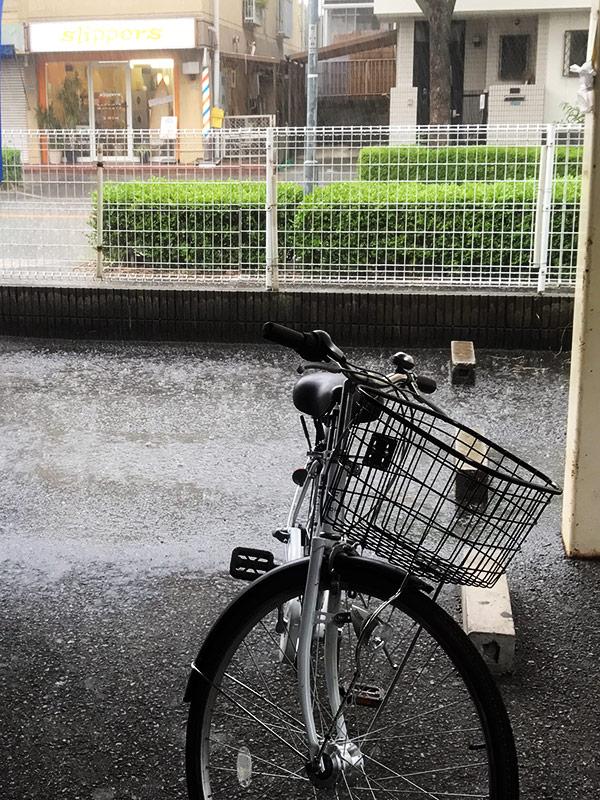 ゲリラ豪雨 2017