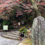 続・京都紅葉下見