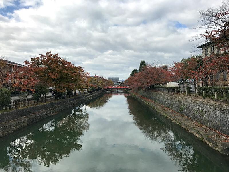 岡崎公園 疎水 2017