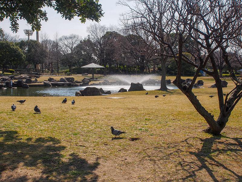 小田南公園 2018