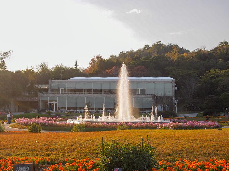 兵庫県立フラワーセンター 2018