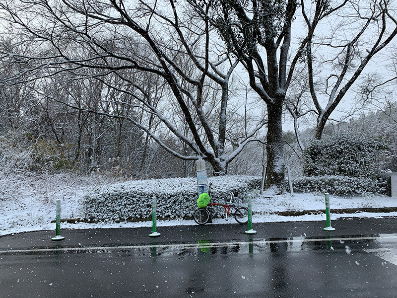 Brompton 雪 2019
