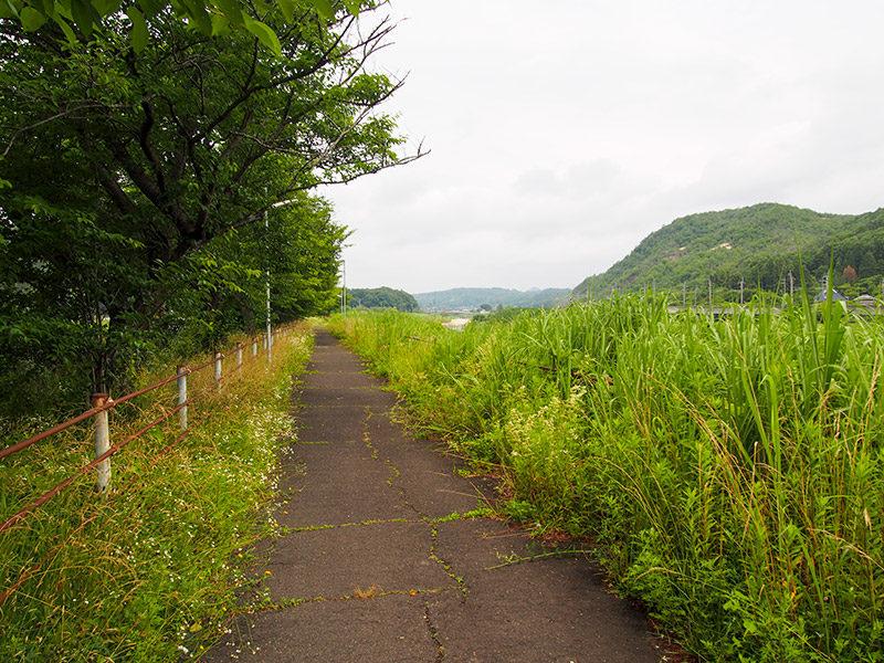 道場自転車歩行者専用道路