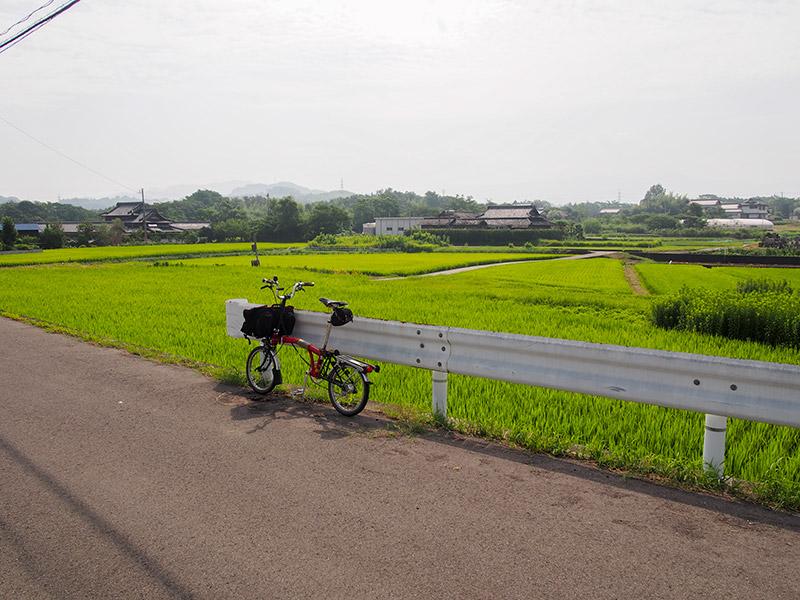 四国県道24号