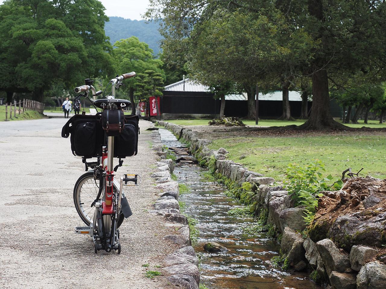奈良公園 2020