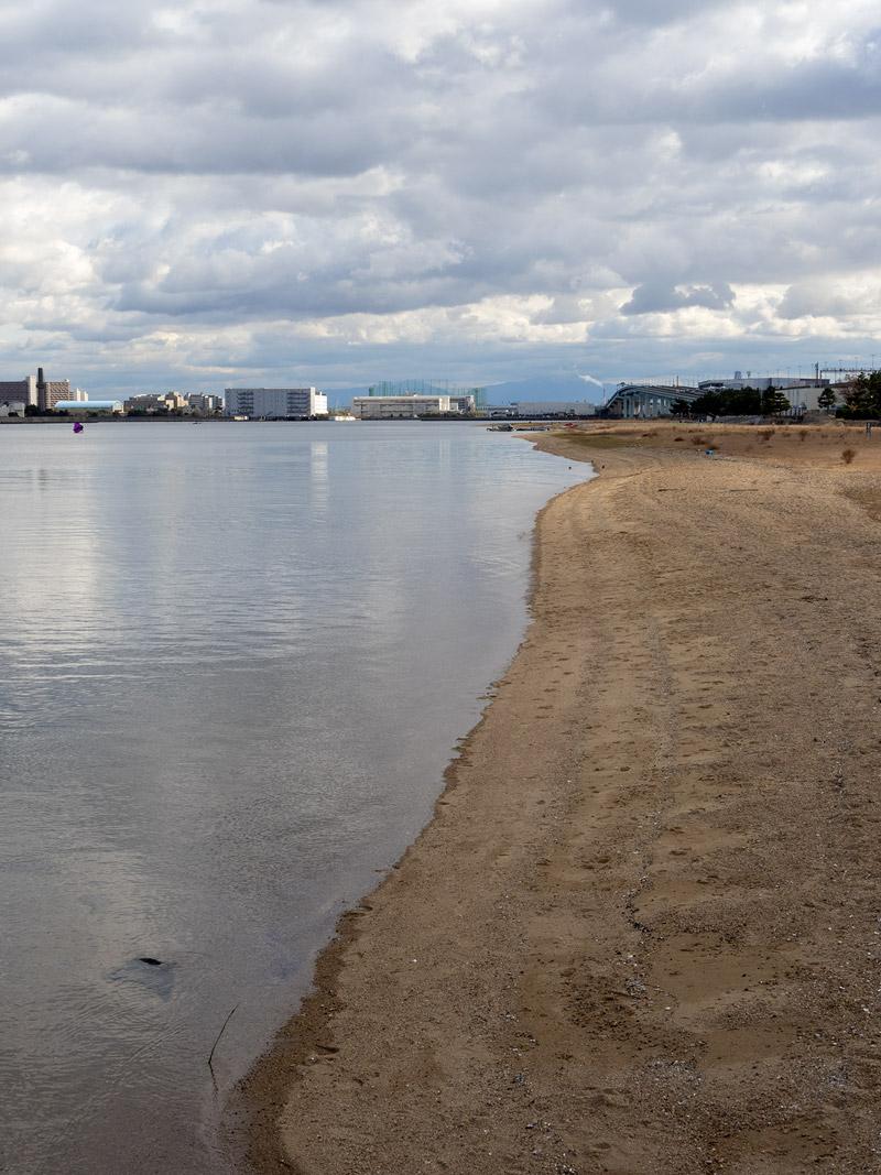 甲子園浜海浜公園 2020