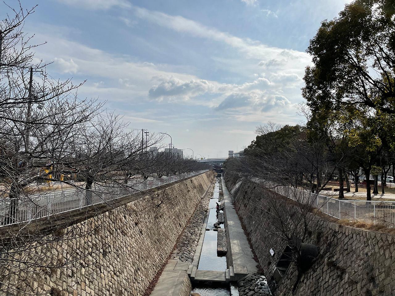 妙法寺川 2021