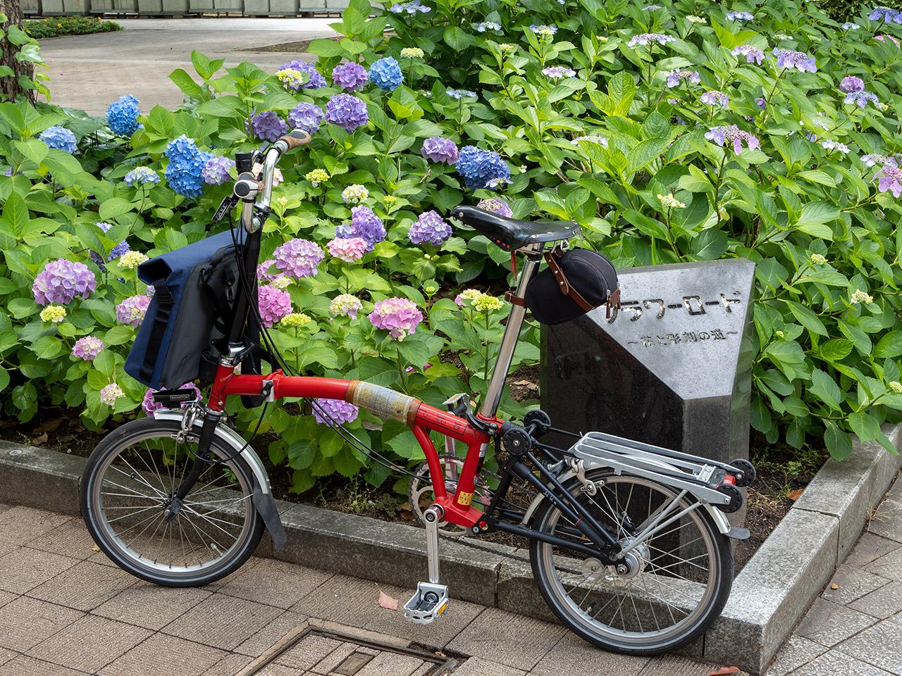 神戸 フラワーロード 2021