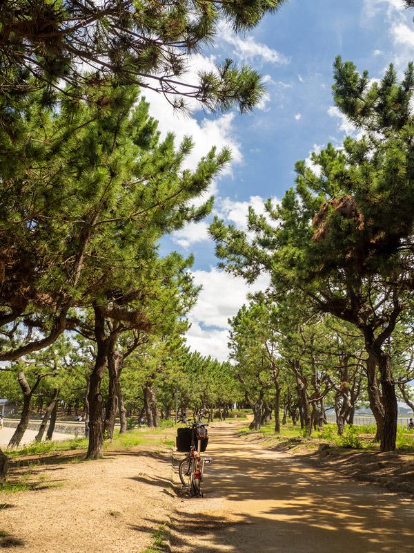 兵庫県立 高砂海浜公園 2021